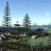 Палеонтологическая находка кордаитового дерева в Национальном музее Республики Башкортостан.