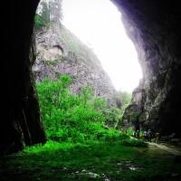 Научно-популярная статья о пещере Шульган-Таш ко дню заповедников и национальных парков России.