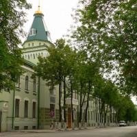 Национальный музей Республики Башкортостан принял участие в онлайн-семинаре «Пишем историю»