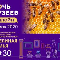 Видеоурок «Загадочный мир пчел»