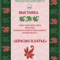 Национальный музей Республики Башкортостан подвел итоги Открытого межрегионального фотоконкурса «Красно платье»