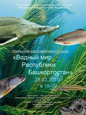 28 марта в Национальном музее Республики Башкортостан открывается обновленная экспозиция, посвященная водному миру нашей республики.