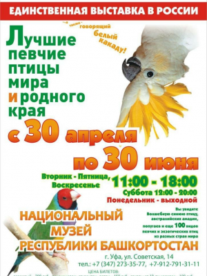 30 апреля 2019 года в Национальном музее Республики Башкортостан открылась единственная в России выставка «Лучшие певчие птицы мира и родного края»